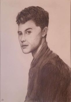 Shawn Mendes by ollieestuff