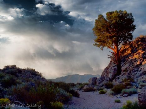 Incoming Storm by MartinGollery