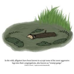 A Fantastically False Fact About Alligators by Zombie-Kawakami