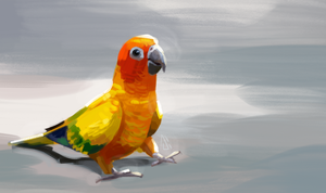 Lost parrot by JoyFoxy