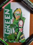 Day 351 Green Arrow by TomatoStyles