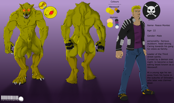 2016 Reace Ref Sheet by petplayer976