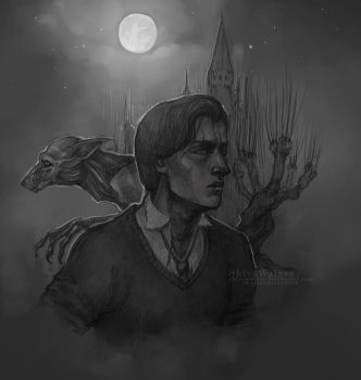Remus Lupin by ShivaWalker