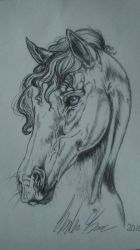 Horse in Ballpoint Pen by TravelingArtist93