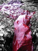 River of blood by Ollapus