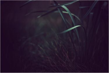 Grass by RemusSirion
