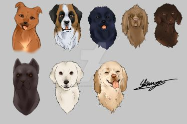 Practicing drawing different breeds by 20thCenturyShugo