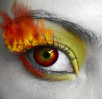 The Four Elements - FIRE by ingrid-crimson