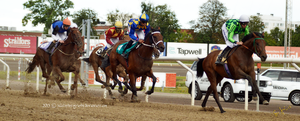 Horse Racing 3 by JullelinPhotography