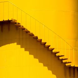 Really very Yellow.. by lomatic