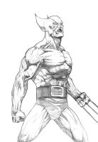 Wolvie Pencil by mikemaluk