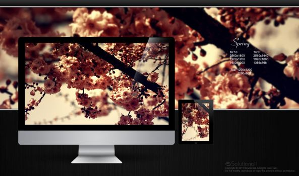 Spring HD Wallpaper by solutionall