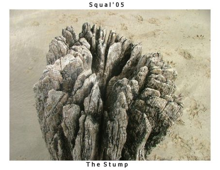 The stump... by squal