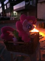 Down to the the bon fire. S'more time. by EquestriaPlush