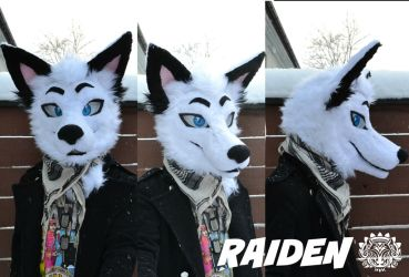 Commission head - Raiden the fox by RaviTheBlueTiger