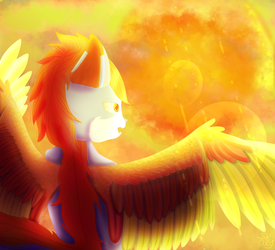 Bright sun yes by Skythedragonwolf