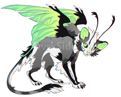 Catmoth Adopt #1 | OTA CLOSED by DvrkSide