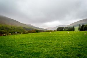 The College Valley, Hethpool by Princess-Amy