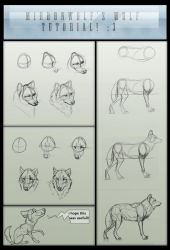 Mirdonwolf's basic wolf tutorial by MangoBirdy