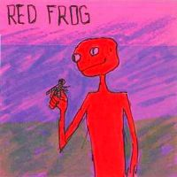 Red Frog by Marc-Jager