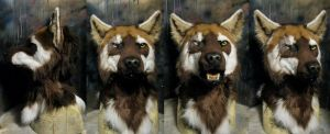 Zarkayrin wolf mask by Crystumes