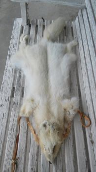 Arctic Fox Headdress SOLD by Pheasant-Sky