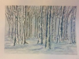 Cannock Chase in winter by Jennyben