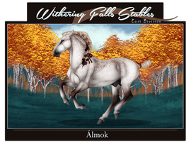 X2506 WF's Almok by WFS-EastDivision