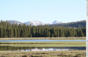 Tuolumne Meadows 4 by RoonToo