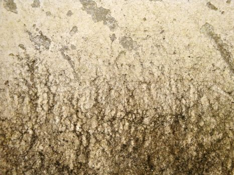 Wall - Texture 14 - by K-RiM-Startimes2