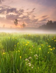 The First Moments of a New Day by DeingeL