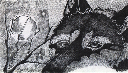 Wolfnight by Wol4ica