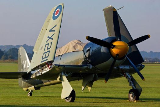 Hawker Sea Fury T.20 by Daniel-Wales-Images
