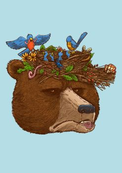 Mr Bear's Nature Hat 2017 by nickv47
