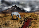 Dark Skies and a River Of Blood by NorthernMyth