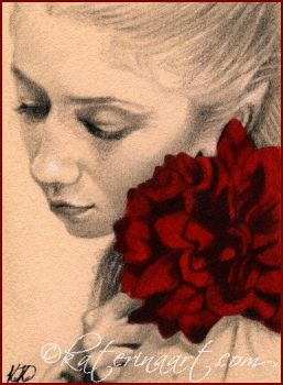 My Valentine Rose - ACEO by Katerina-Art