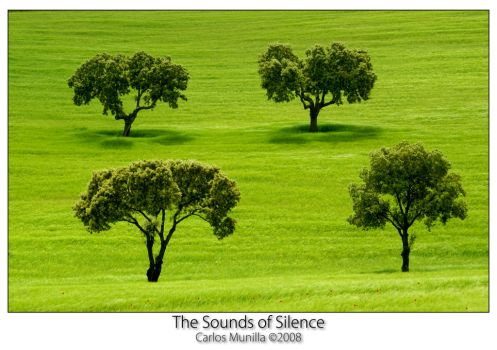 The Sounds of Silence by cmunilla