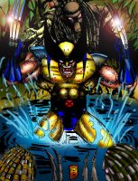 Wolverinr vs Predators by BigRob1031