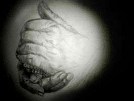 Old hands by Melouche