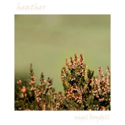Heather in the Weather by photonig