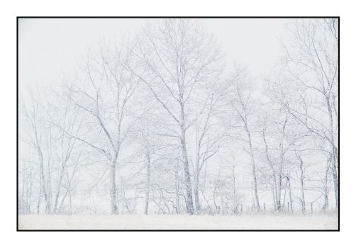Whiteout. L1000287, with story by harrietsfriend
