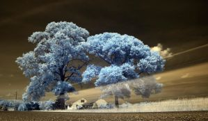 Car Tracer IR by Enkphoto