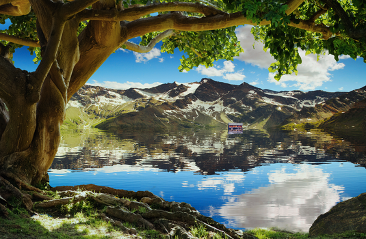 Photoshop Challenge Day 3 - Water Reflection by Zenuvion