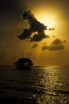 Sunset in Guadeloupe by Dje514