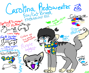 Carolina Redsweater Refrence 2012 by gayspacer