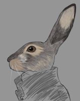 Mr Hare Daily sketch #958 by GothicVampireFreak