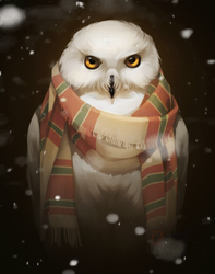 Owl in scarf_gif by GaudiBuendia