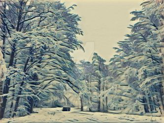 Winter forest by Pappart