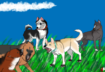 Group of new Canines by liongirl2289