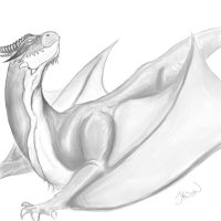 Dragon 5.1 by wimpified